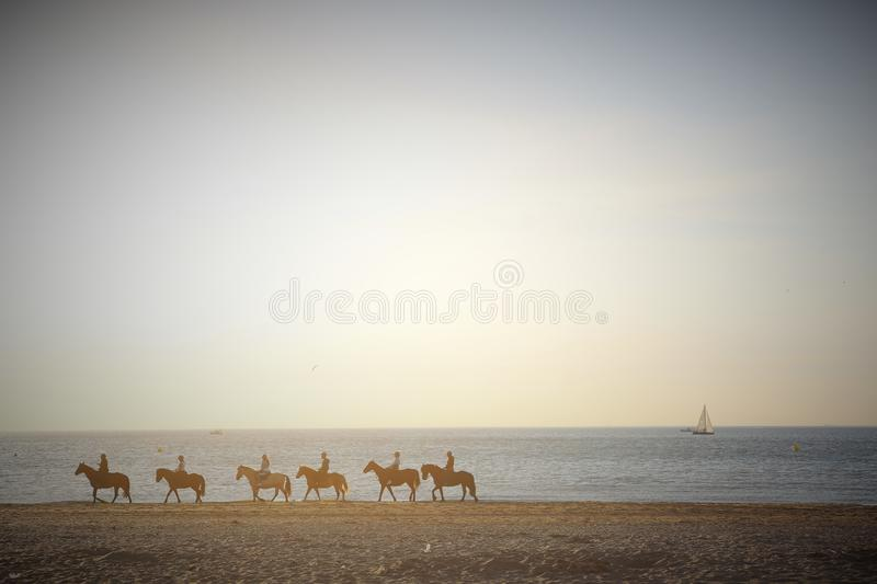 Deauville, France. 05.04.2016. Group of horses in the beach with jogger and a sailboat in the background and with vintage tones. Horses in the background with a stock image