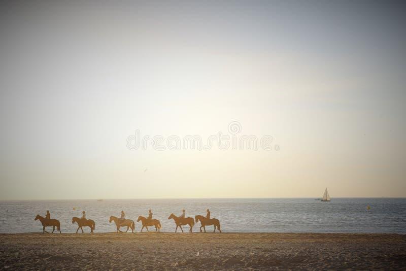 Deauville, Frankrijk 05 04 2016 Groep paarden in het strand met jogger en een zeilboot op de achtergrond en met uitstekende tonen stock afbeelding