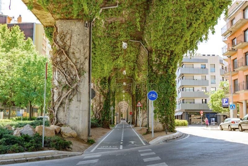 Debajo del puente de las plantas Girona España fotografía de archivo libre de regalías