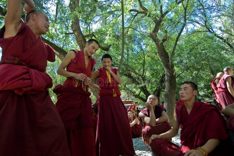 debattera monks royaltyfri fotografi