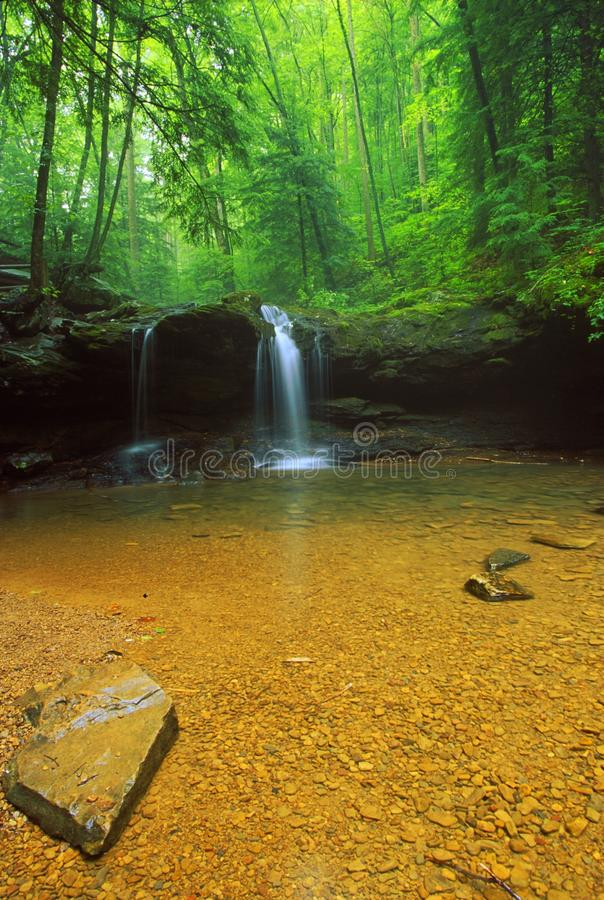 Debord Falls in Summer (wide shot) royalty free stock image