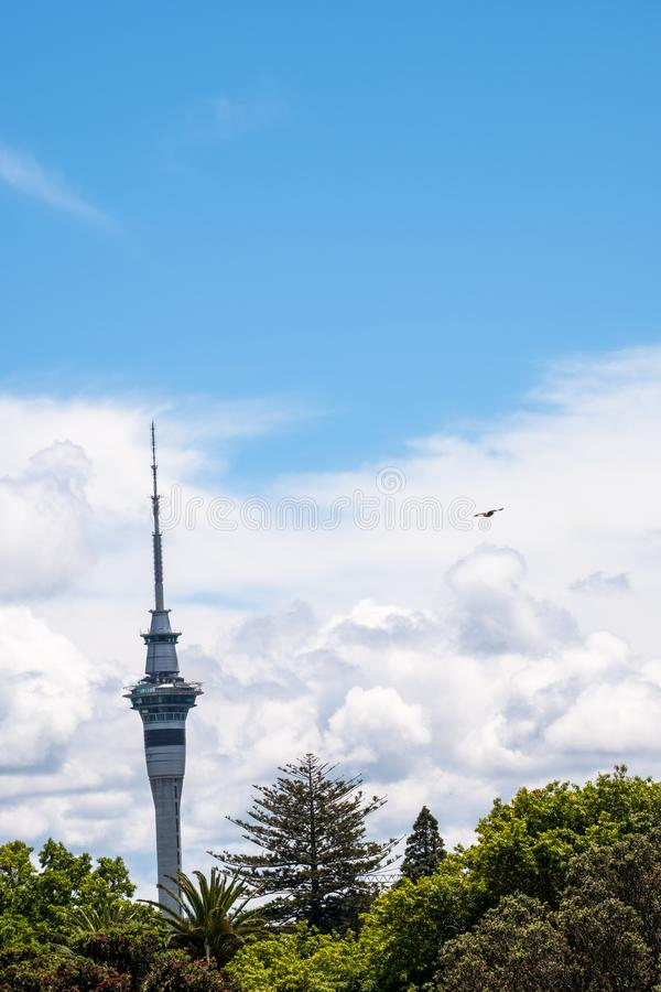 2017, DEC 4 - Auckland, New Zealand - Skytower over the green trees with clouds and blue sky. I. 2017, DEC 4 - Auckland, New Zealand - Skytower over the green royalty free stock images