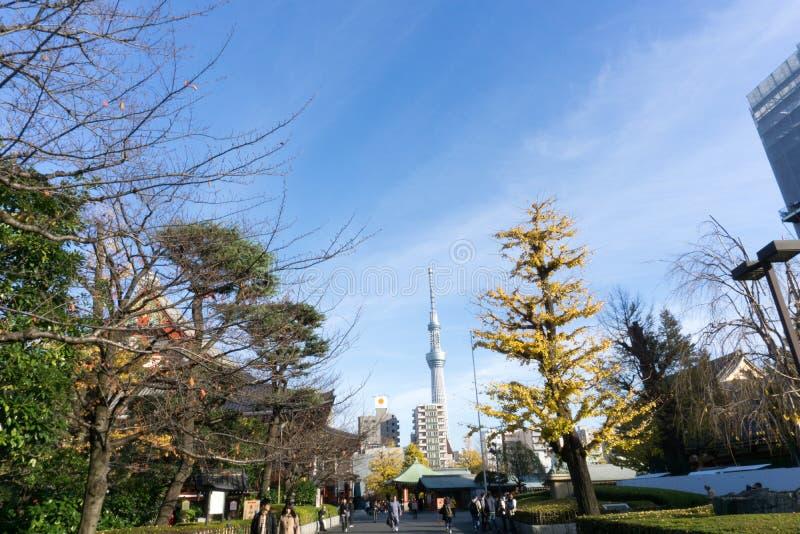 Dec 2, 2016: Tokio Japonia: park i budynki zdjęcie royalty free