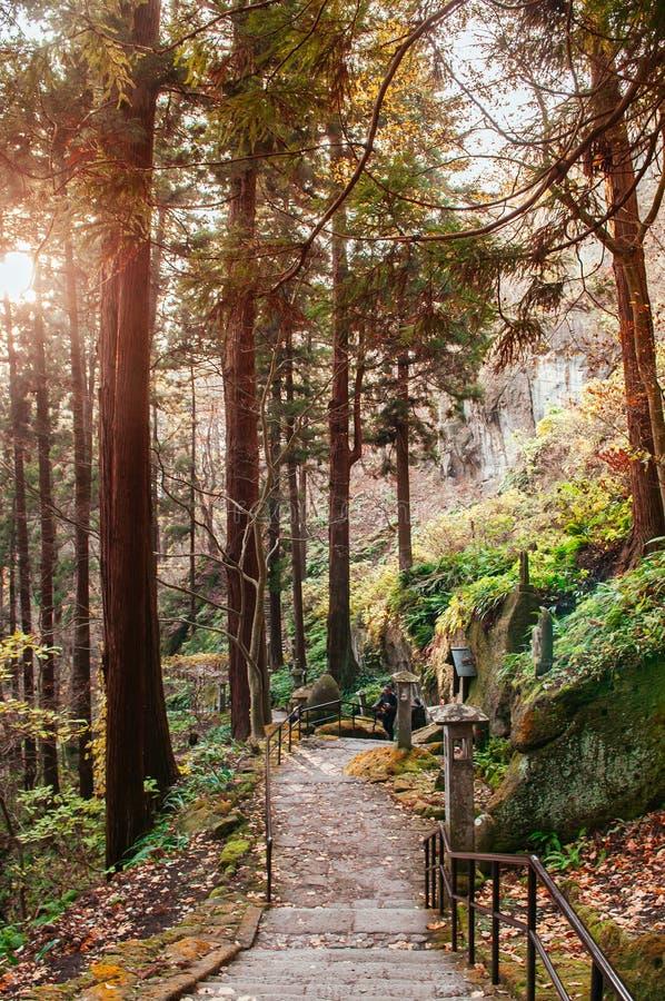 Yonsunmichi path in pine forest at Yamadera Risshaku ji temple, Yamagata - Japan. DEC 3, 2018 Yamagata, Japan - Tourist on Yonsunmichi path in pine forest with stock photography