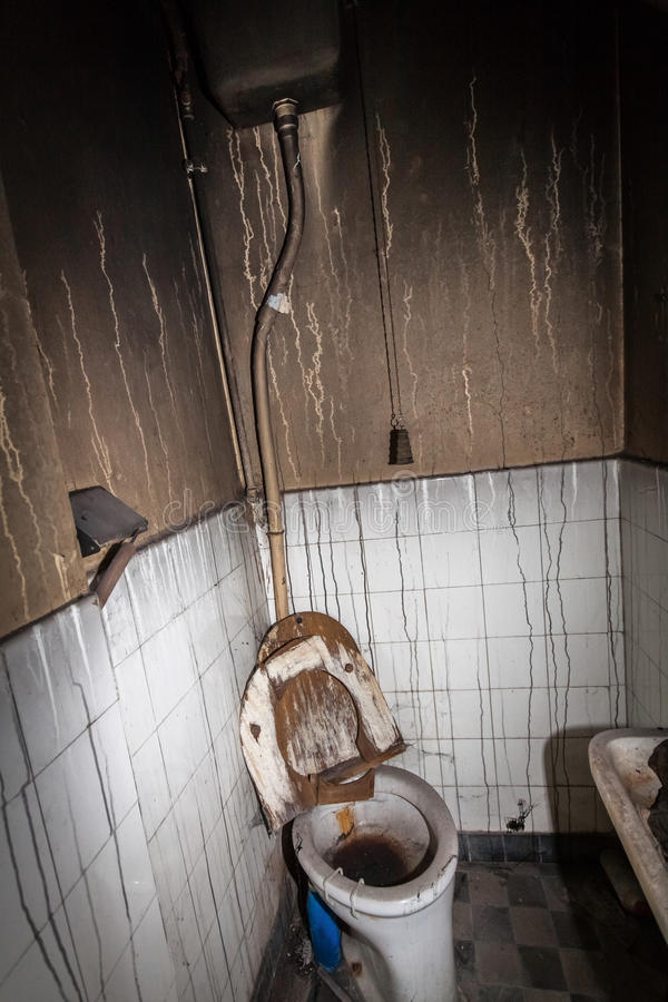 Decaying Toilet royalty free stock images