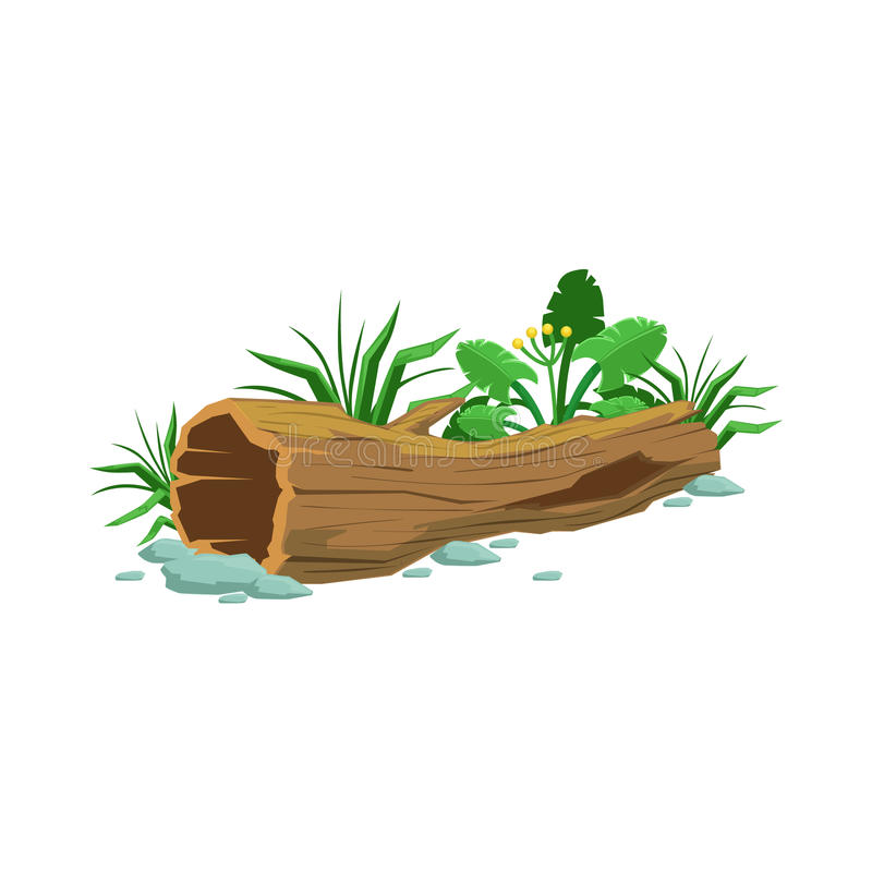 Decaying Wood Hollowed Log In Swamp Natural Landscape Design Element Part Of Scenery In Nature Landscaping Constructor Stock Vector Illustration Of Isolated Object 82398823