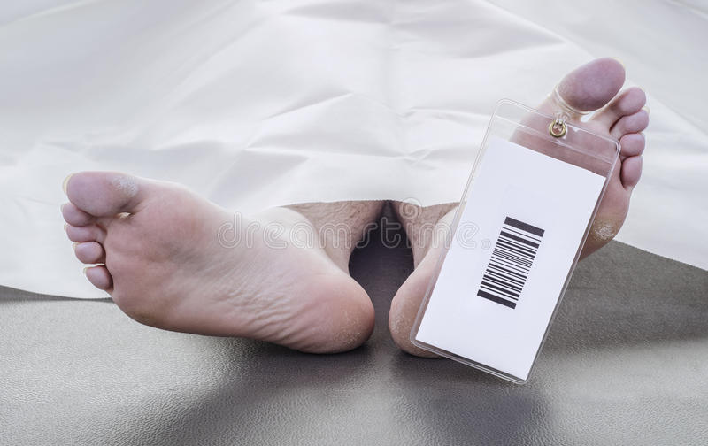 Deceased man. With a bar code on his toe tag, covered in a white sheet royalty free stock photos