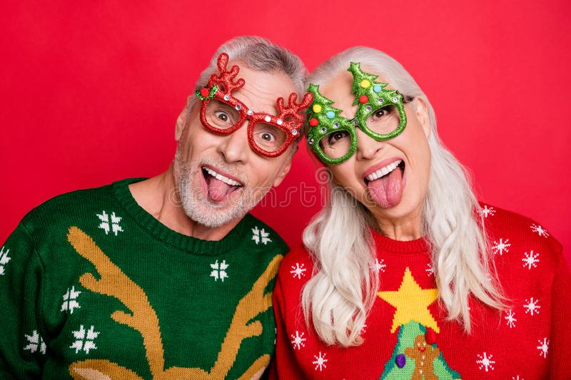 December portrait humorous memories concept. Close up photo of two funky childish playful carefree careless grey white royalty free stock photos