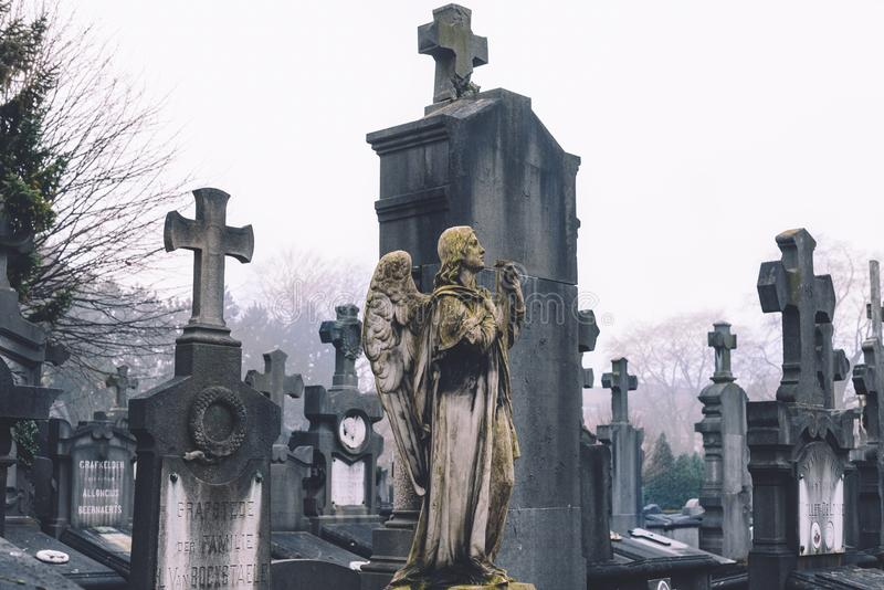 Cemetery Angel and Crosses in Ghent royalty free stock photography