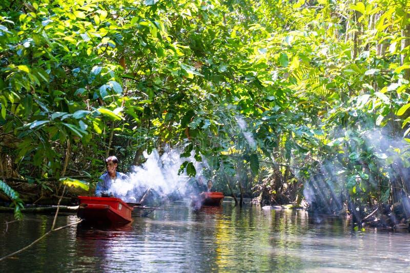 22 December 2018-Thailand:: loppmangroveskog med roddbåten royaltyfri foto