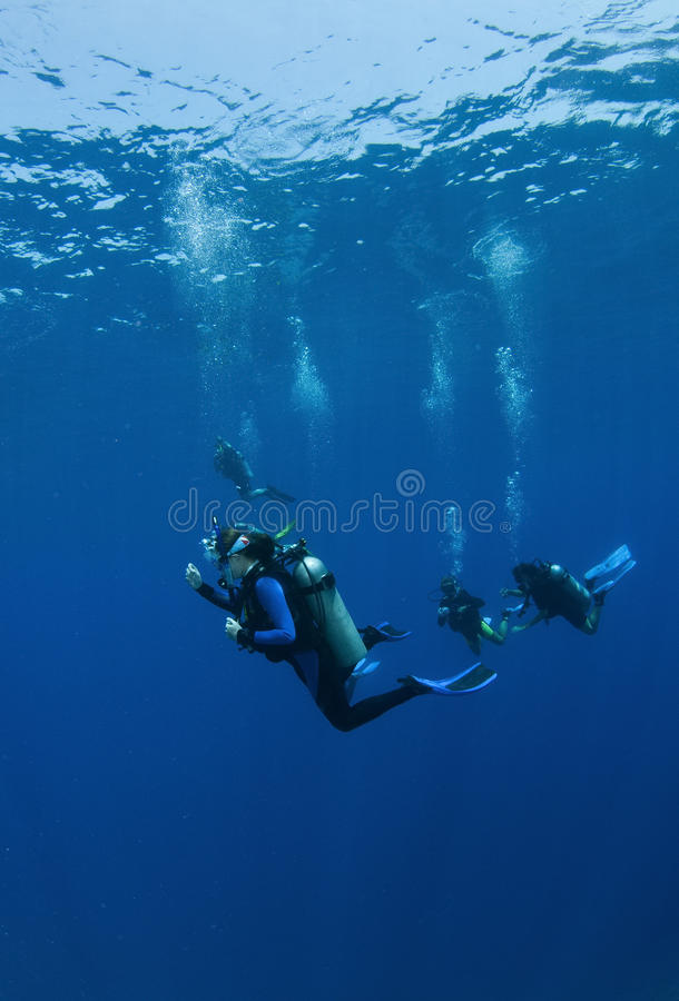 decend潜水员水肺 库存照片