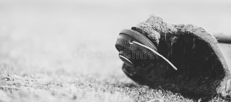 Decespugliatore su erba falciata, fine su Tema dei servizi di cura del prato inglese, dell'affitto dello strumento o della ripara fotografia stock