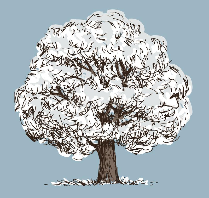 A deciduous tree in a snowy frosty winter royalty free illustration