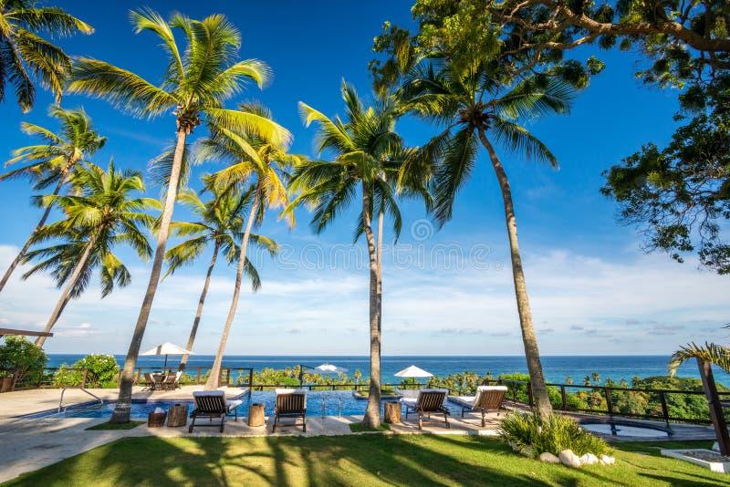 Deckchair-Ruhesessel mit Palmen und Unendlichkeitspool in Dominikanischer Republik Barahona stockbild