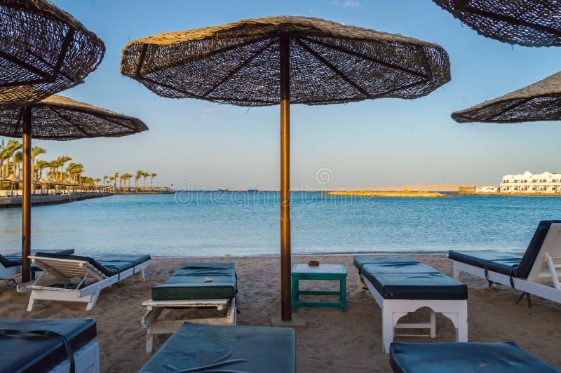Deckchairs и парасоли на пляже Красного Моря стоковая фотография rf