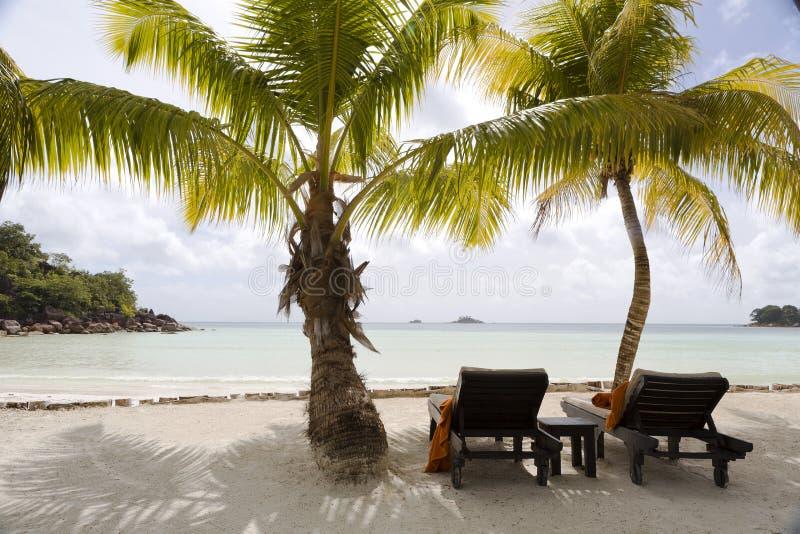 Deckchairs an der tropischen Landschaftsansicht, Seychellen stockfotos