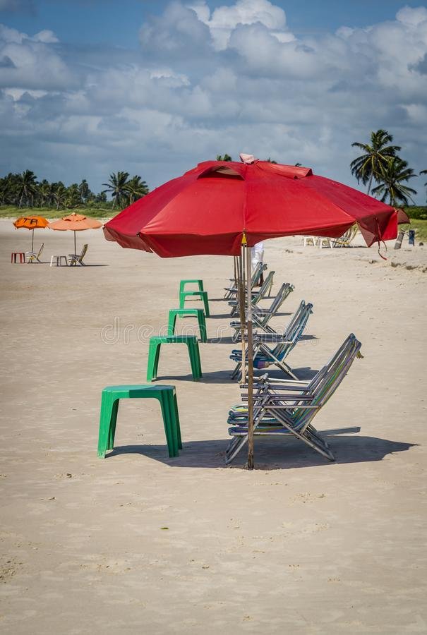 Deckchairs väntande på sunbathers, Brasilien royaltyfri fotografi