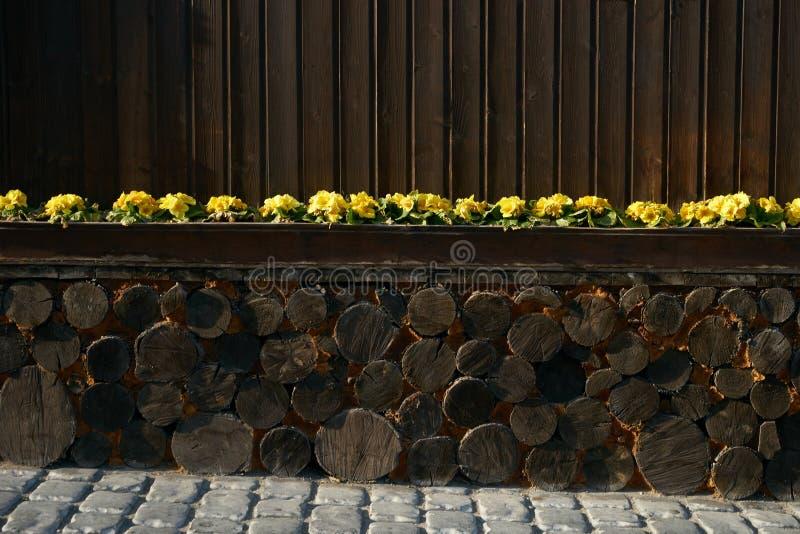 Decking de la madera dura o suelo y planta viejos en jardín imágenes de archivo libres de regalías