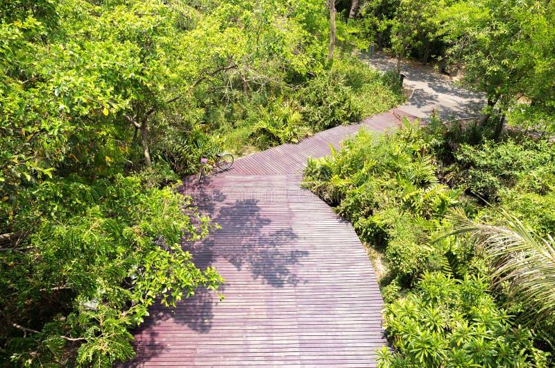 Decking de madera de la manera de la trayectoria de la visión superior en Forest Park foto de archivo libre de regalías