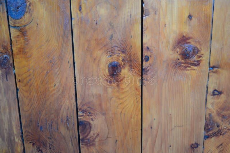 Decking de madera del roble con anudar imagen de archivo