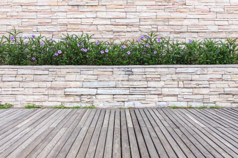 Decking y planta de madera viejos con el jardín de la pared decorativo fotos de archivo libres de regalías