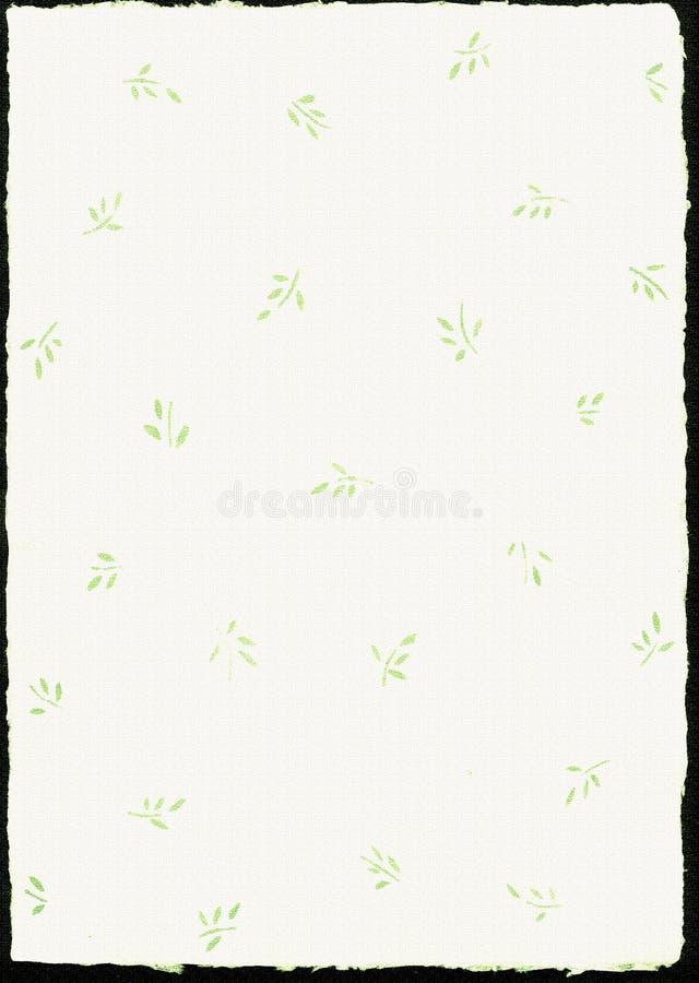 Deckle bianco ha orlato la carta da parati naturale, il documento, la struttura, estratto, fotografia stock libera da diritti
