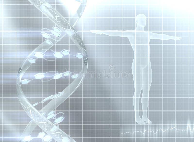 Decodifica del genoma illustrazione di stock