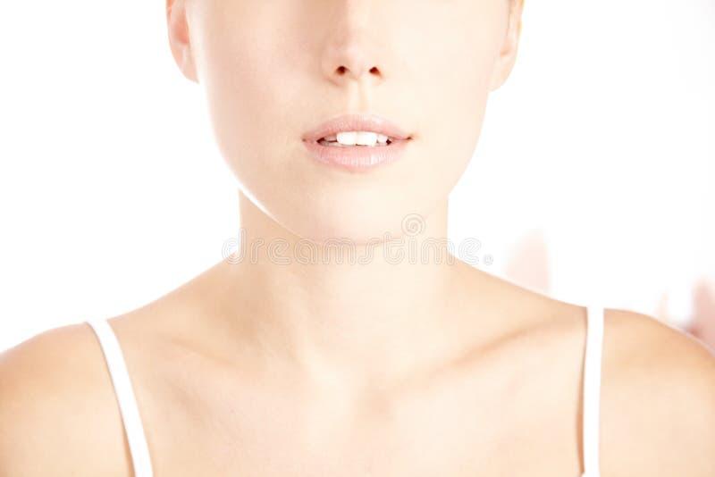 Decollete de mujer con la piel sin defectos fotos de archivo