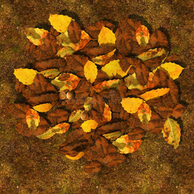 Decomposed leaves. Litterfall is characterized as fresh, undecomposed, and easily recognizable (by species and type) plant debris royalty free illustration