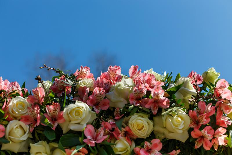 Decor for a round wedding arch from branches decorated with flowers stock images