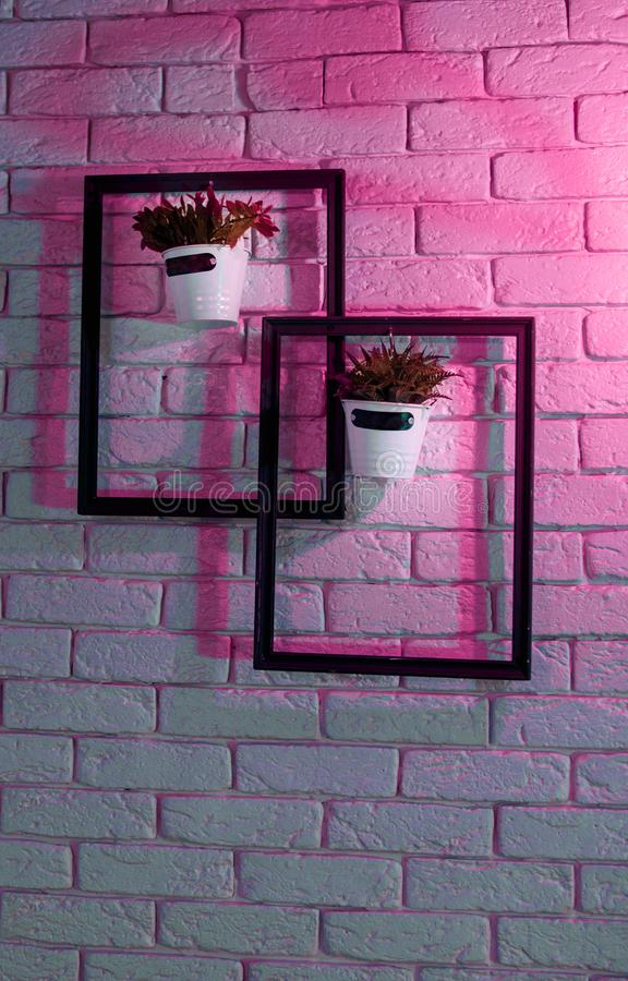 The decor on the wall in the cafe. Two frames with flowers. Interior design, cafe decor, wall decoration Ultraviolet royalty free stock images