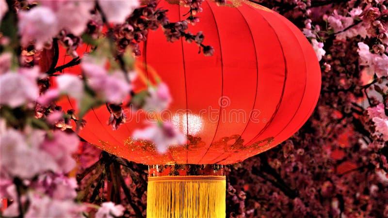 Decoração chinesa do ano novo na alameda de compra foto de stock royalty free