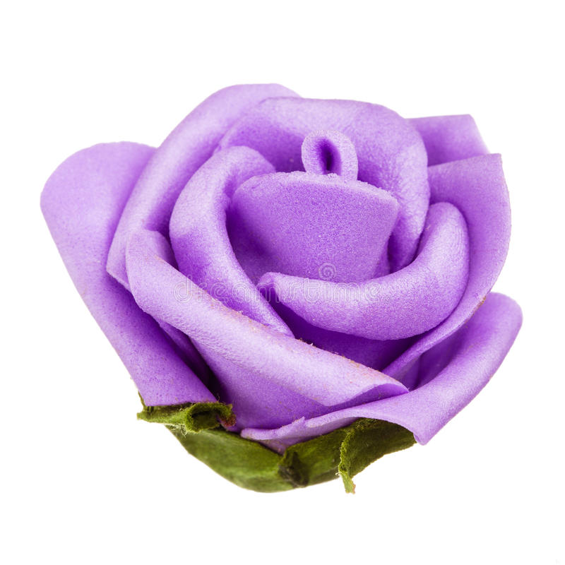 Decoração da cabeça de flor roxa, mola e conceito isolados, bonitos do verão fotos de stock royalty free