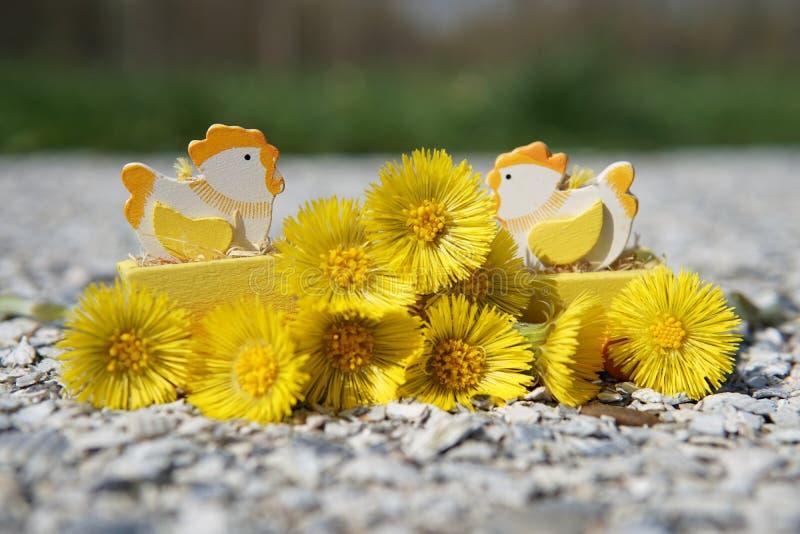 Decoração da Páscoa de galinhas da Páscoa com flores amarelas fotos de stock royalty free