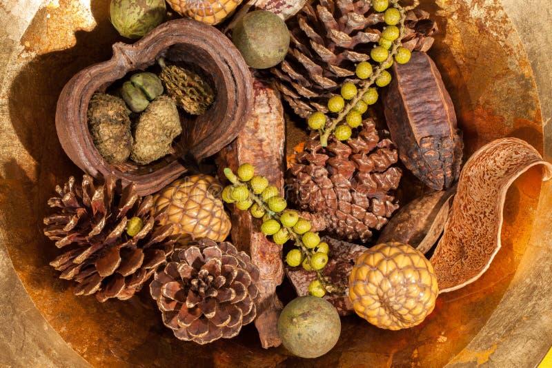 Decoração da tabela do pot-pourri do Natal Pinecone tradicional do xmas fotos de stock