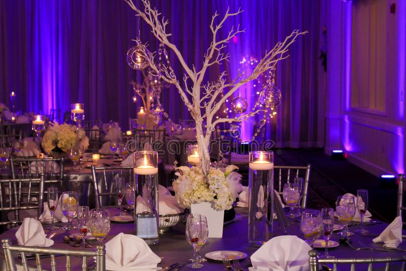 Decoração da tabela para um casamento do inverno foto de stock royalty free