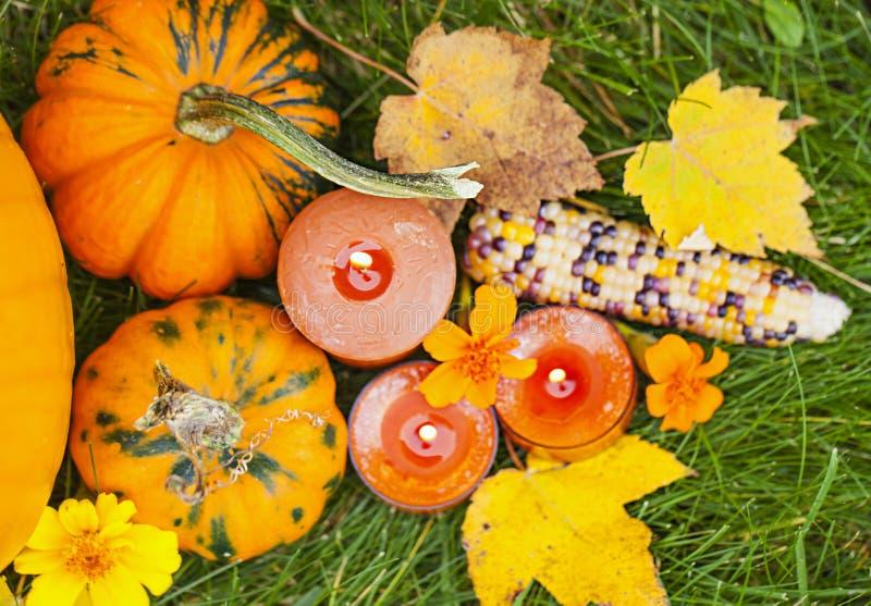 Decoração de Autumn Pumpkin Thanksgiving imagens de stock royalty free