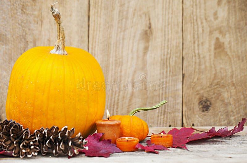 Decoração de Autumn Pumpkin Thanksgiving fotos de stock