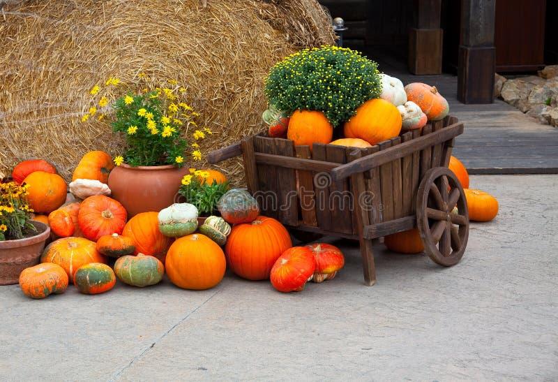 Decoração de Halloween foto de stock royalty free