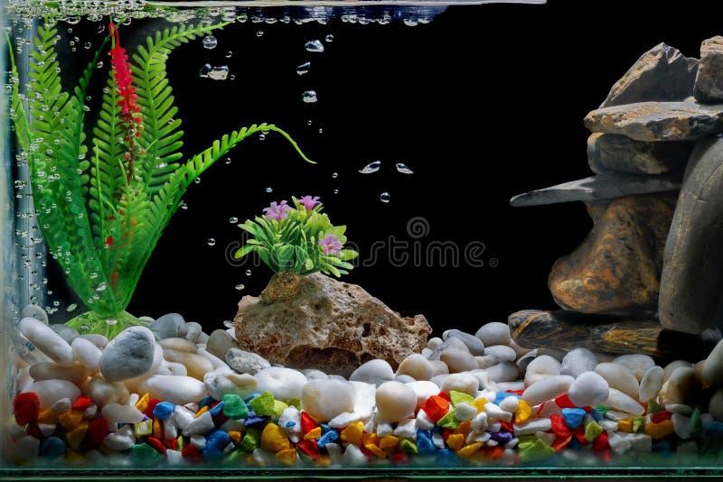 Decoração do aquário, com cascalho e árvore, com bolhas no contexto preto imagem de stock