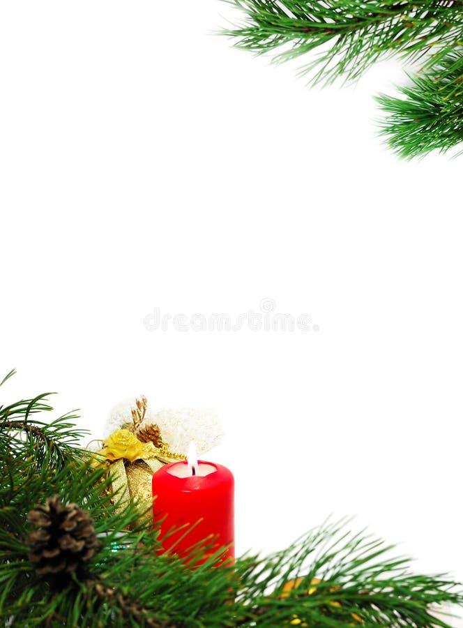 Decoração do Natal com uma filial e uma vela do pinho fotografia de stock royalty free