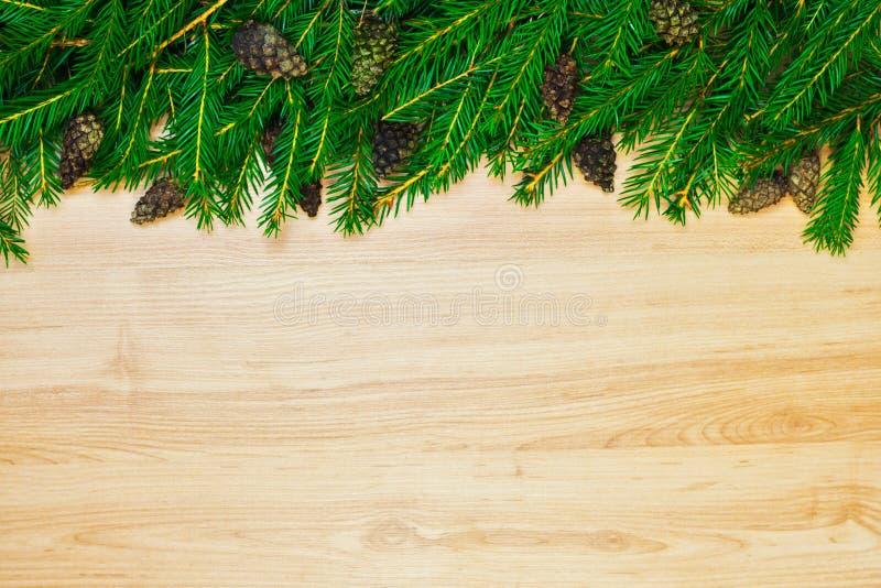 Decoração do Natal da árvore de abeto e do cone das coníferas fotos de stock royalty free