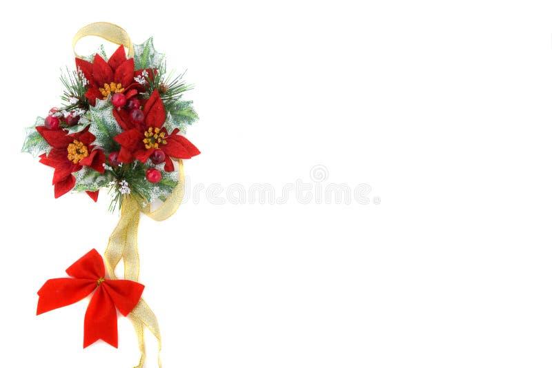 Decoração Do Natal Do Poinsettia Com Fita Do Ouro Fotografia de Stock