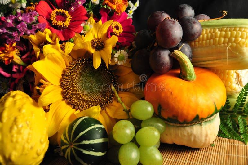 Decoração do outono fotos de stock