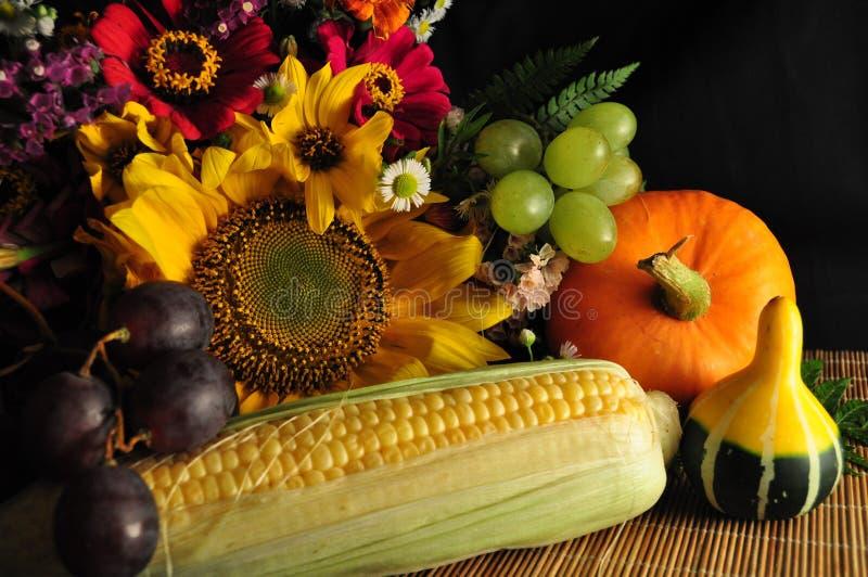 Decoração do outono fotografia de stock royalty free