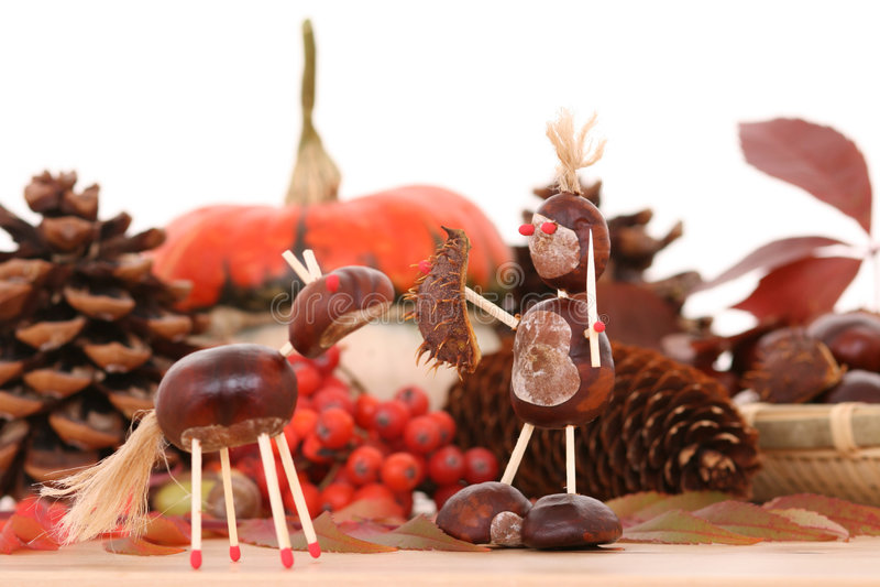 Decoração do outono imagens de stock royalty free