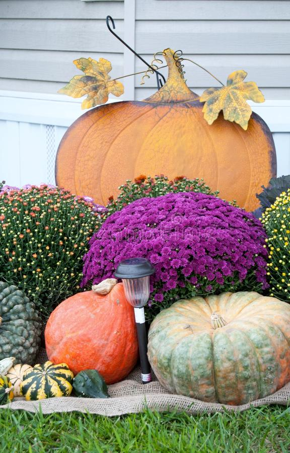 Decoração do outono imagem de stock royalty free