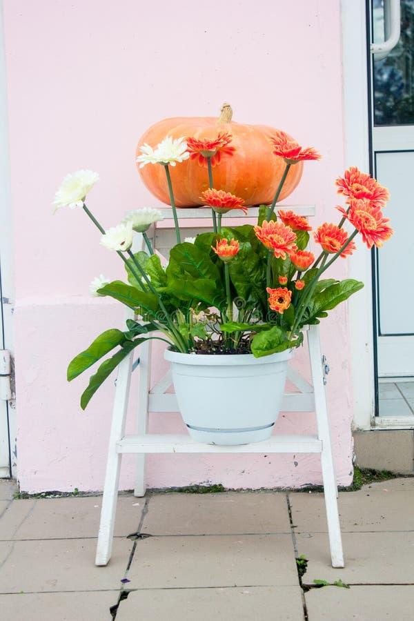 Decoração do outono - abóbora e flores na rua imagens de stock