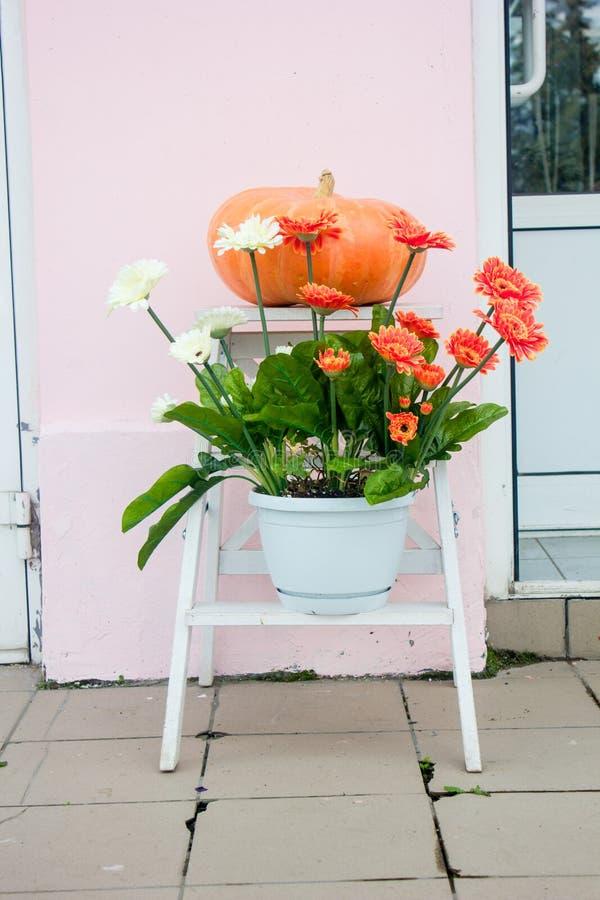 Decoração do outono - abóbora e flores na rua imagem de stock