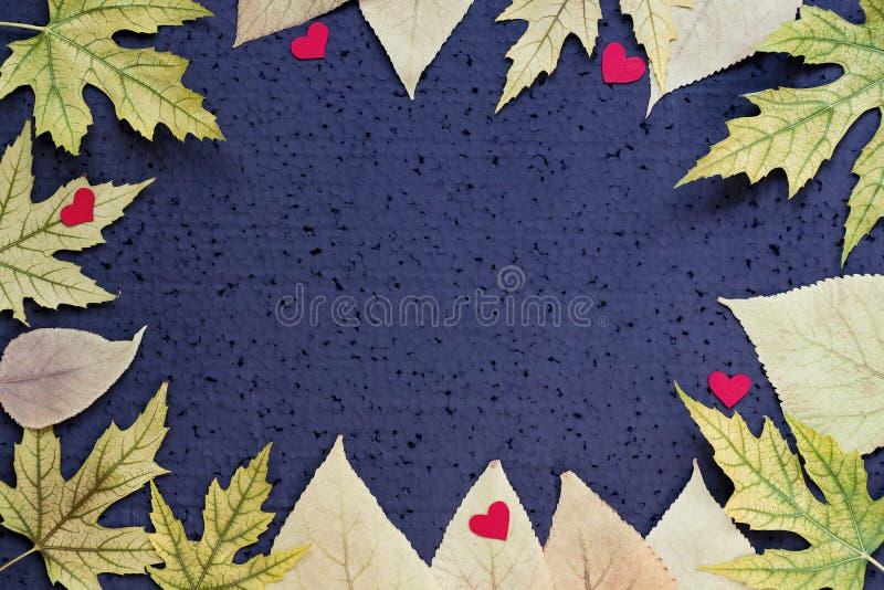 Decoração do outono - quadro das folhas do amarelo e de corações vermelhos em um fundo preto Copie o espaço fotos de stock